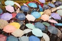 傘のパターン 10376000614| 写真素材・ストックフォト・画像・イラスト素材|アマナイメージズ