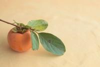 葉付きの柿