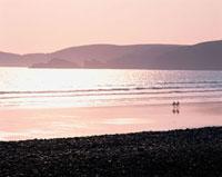 海辺を歩く2人のシルエット 10381000331| 写真素材・ストックフォト・画像・イラスト素材|アマナイメージズ