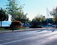 道路沿いに立つ旗 10381000614| 写真素材・ストックフォト・画像・イラスト素材|アマナイメージズ
