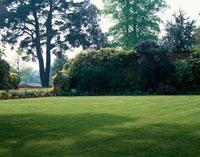 植え込みのある庭園