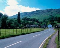 牧草地の道