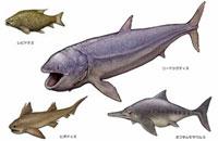 ジュラ紀 魚