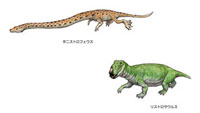 三畳紀 ヨーロッパの恐竜
