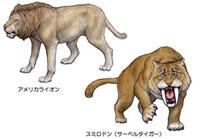 第四紀 北アメリカの生き物