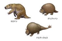 第四紀 南アメリカの生き物