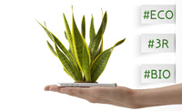 スマートフォンから生える植物を持つ女性の手 10387001754| 写真素材・ストックフォト・画像・イラスト素材|アマナイメージズ