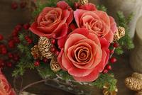 小さなクリスマス 10399000439| 写真素材・ストックフォト・画像・イラスト素材|アマナイメージズ