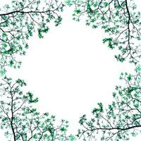 木の額 10401000094| 写真素材・ストックフォト・画像・イラスト素材|アマナイメージズ