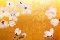金屏風と桜(フォトイラスト)