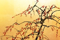 梅と金屏風(フォトイラスト)