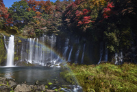 秋の白糸の滝