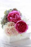 バラとアジサイのアレンジ 10405000001| 写真素材・ストックフォト・画像・イラスト素材|アマナイメージズ