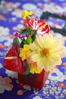 古絹和柄布の上の赤茶器でのアレンジ 10405000045| 写真素材・ストックフォト・画像・イラスト素材|アマナイメージズ