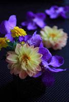 黒いクロス布の上の花
