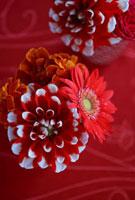 赤い古絹和布の上の赤柄器のアレンジ 10405000051| 写真素材・ストックフォト・画像・イラスト素材|アマナイメージズ