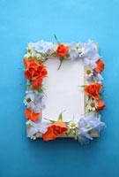 青い背景の額の上のフラワーアレンジ 10405000131| 写真素材・ストックフォト・画像・イラスト素材|アマナイメージズ