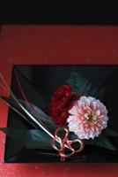 和の皿にダリアとバラとカーネーションの水引のお正月アレンジ 10405000368| 写真素材・ストックフォト・画像・イラスト素材|アマナイメージズ