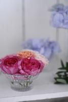 棚に飾られた、ガラスの器にいけたバラとアジサイ 10405000739| 写真素材・ストックフォト・画像・イラスト素材|アマナイメージズ