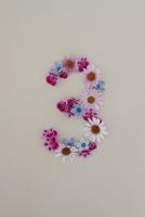 花の数字、3(生花) 10405000858| 写真素材・ストックフォト・画像・イラスト素材|アマナイメージズ