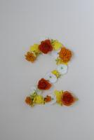 花の数字、2(生花) 10405000860| 写真素材・ストックフォト・画像・イラスト素材|アマナイメージズ