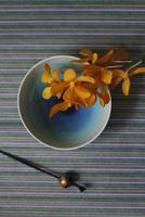 青い和皿に乗せたランの花と黒いかんざし 10405000967| 写真素材・ストックフォト・画像・イラスト素材|アマナイメージズ