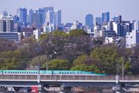 東京を走る東北新幹線E5系はやぶさと新宿高層ビル群
