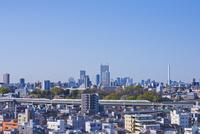 東京を走る東北新幹線E2系と山形新幹線E3系と池袋と新宿高層ビル