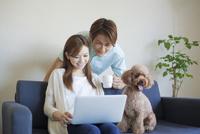 パソコンを見つめるカップルと犬