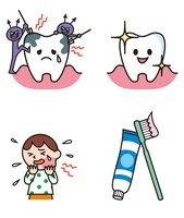 虫歯になる歯、健康な歯、子ども、歯ブラシと歯磨き粉