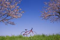 赤い自転車と桜と草むら