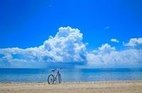 ビーチの自転車