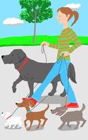 犬を散歩させる人