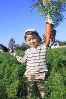 人参を収穫する男の子 10467001429| 写真素材・ストックフォト・画像・イラスト素材|アマナイメージズ