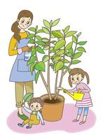 植木に水をやる親子