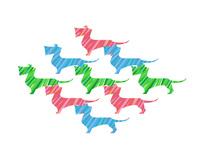 カラフルダックス  10473000154| 写真素材・ストックフォト・画像・イラスト素材|アマナイメージズ