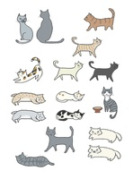 いろいろな猫