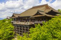 清水寺の本堂