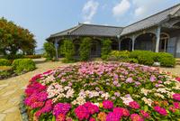 長崎のグラバー園 旧グラバー住宅 10487002126  写真素材・ストックフォト・画像・イラスト素材 アマナイメージズ