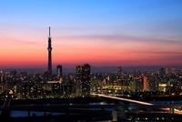 船堀より望む東京スカイツリーの夕景
