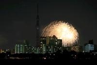 荒川沿いより望む東京スカイツリーの夜景と花火
