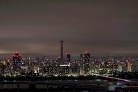 船堀より望む東京スカイツリー方面の夜景