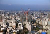 アサヒビールタワーより望む東京スカイツリー