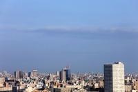 船堀より望む東京スカイツリー
