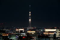 六本木ヒルズより望む「雅」にライトアップした東京スカイツリー