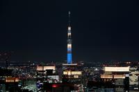 六本木ヒルズより望む「粋」にライトアップした東京スカイツリー