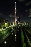 柳島歩道橋より望む「雅」にライトアップした東京スカイツリー