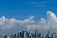 新宿高層ビル群と積乱雲