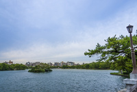 大濠公園(皐月橋より観月橋)