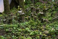 耶馬溪 羅漢寺・仁王門近くの古い墓石群